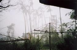 Cyclone Larry hits Babinda, Queensland