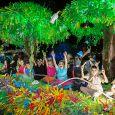 Cairns Festival Parade 230x230